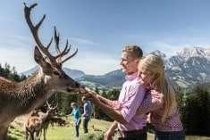 Bauernherbst Salzburg